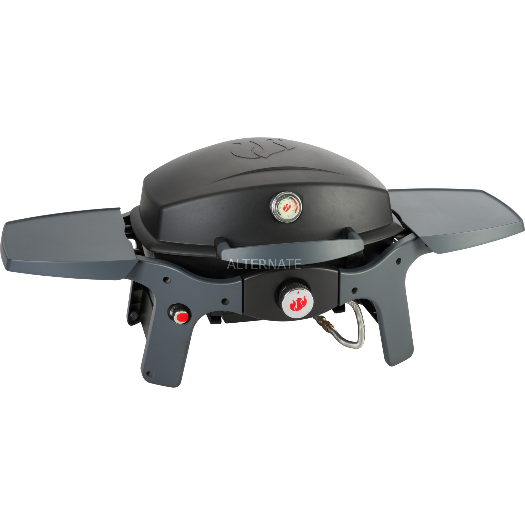 landmann portabler gasgrill pantera 1.0 schwarz